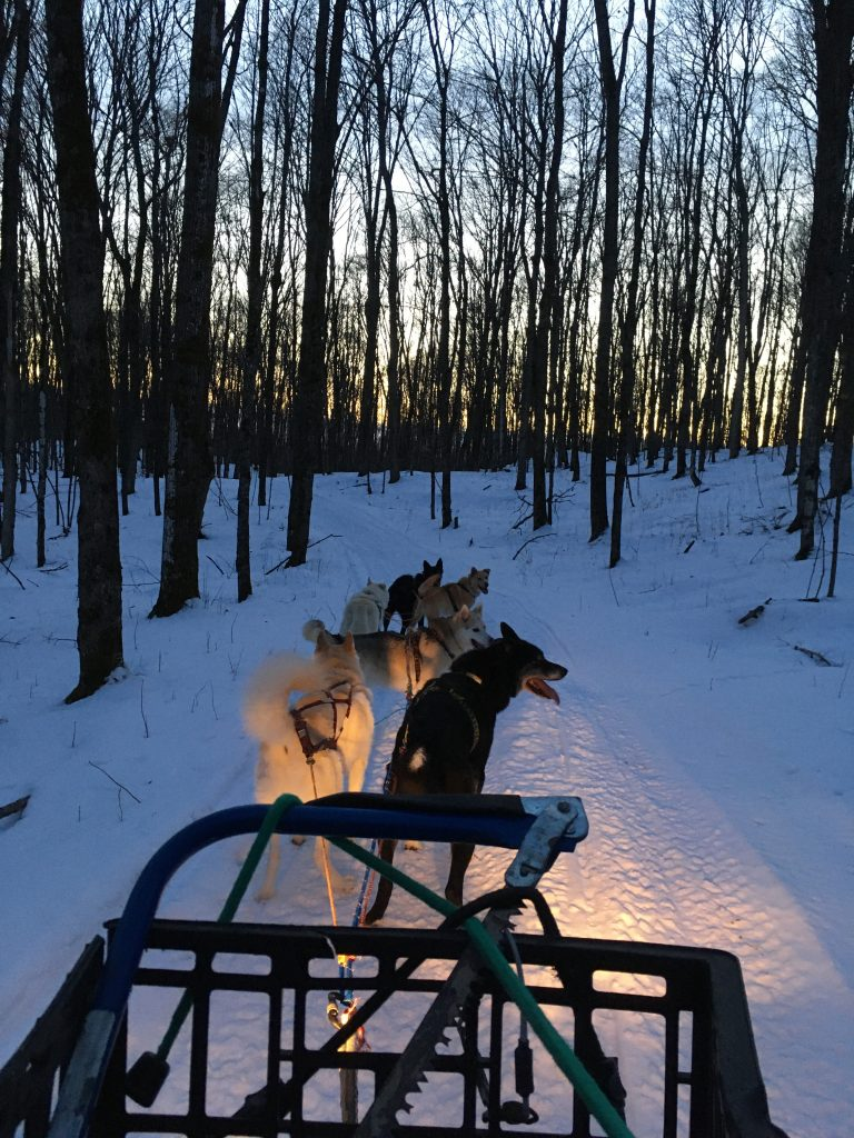 ATV Mushing Jan. 5, 2020 in L'Amable, Ontario